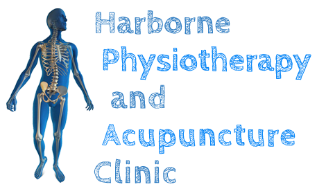 harbornephysioandacupuncture-logo